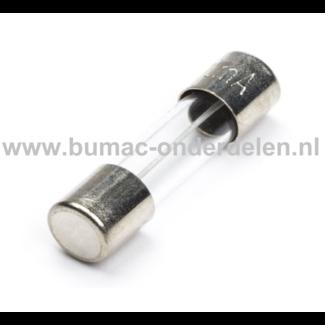 Glaszekering 2A x 20 mm ter bescherming van Electronica in Zitmaaier, Tractor, Auto, Aanhanger, Generator, Hijskraan, Shovel