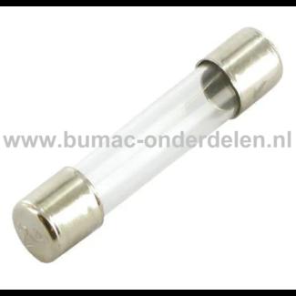 Glaszekering 2A x 32 mm ter bescherming van Electronica in Zitmaaier, Tractor, Auto, Aanhanger, Generator, Hijskraan, Shovel
