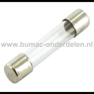 Glaszekering 3A x 32 mm ter bescherming van Electronica in Zitmaaier, Tractor, Auto, Aanhanger, Generator, Hijskraan, Shovel