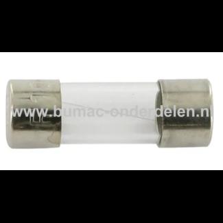 Glaszekering 100mAF x 20 mm ter bescherming van Electronica in Zitmaaier, Tractor, Auto, Aanhanger, Generator, Hijskraan, Shovel