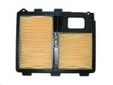 Luchtfilter Honda GX610 - GX620 - GXV610 - GXV620 Motor, Zitmaaier - Zero Turn Maaier - Aggregaat - Motorspuit - Generator