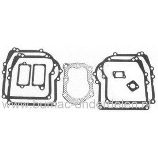 Pakkingset Briggs and Stratton voor Sprint Motoren 3 - 3,5 Pk, Verticale Motoren op Grasmaaiers, Cirkelmaaiers, Benzinemaaiers, Loopmaaiers