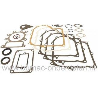 Pakkingset Briggs and Stratton IC Motoren op Zitmaaiers, Set Pakkingen voor B&S Motoren met Verticale Krukas op Zitmaaiers, Frontmaaiers, Tuintrekkers, Dichtingen, B en S Dichtingset