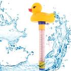 AVDS badeend met thermometer
