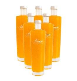 Magó - Premium Liquors Magó 6-Pack