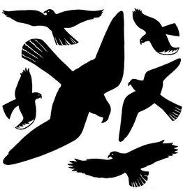 HERMA Warnetikett, Vögel, Folie, selbsthaftend, schwarz