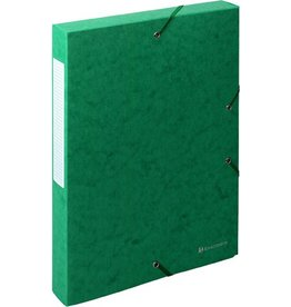 EXACOMPTA Dokumentenbox Exabox, Manilakarton, A4, 24x4x32cm, grün