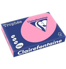 Clairefontaine Multifunktionspapier Trophée, A4, 120 g/m², hf, rose, pastell