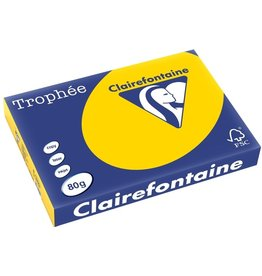 Clairefontaine Multifunktionspapier Trophée, A3, 80 g/m², hf, goldgelb, pastell