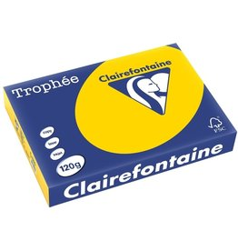 Clairefontaine Multifunktionspapier Trophée, A4, 120 g/m², hf, goldgelb, pastell