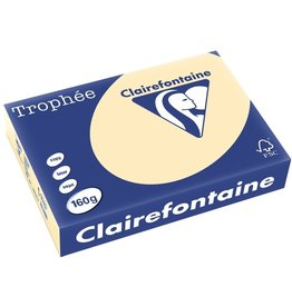 Clairefontaine Multifunktionspapier Trophée, A4, 160 g/m², hf, chamois, pastell