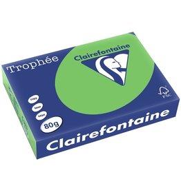 Clairefontaine Multifunktionspapier Trophée, A4, 80 g/m², mintgrün, intensiv