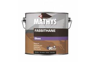 Mathys Fassithane Gloss