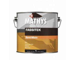 Mathys Fassitek
