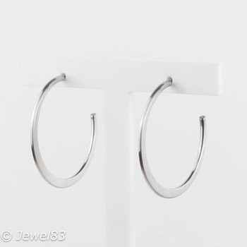Fiell Silver ring earrings