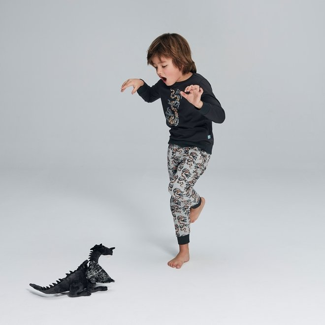 Jungen Pyjama Lounge Set Roaring Dragons
