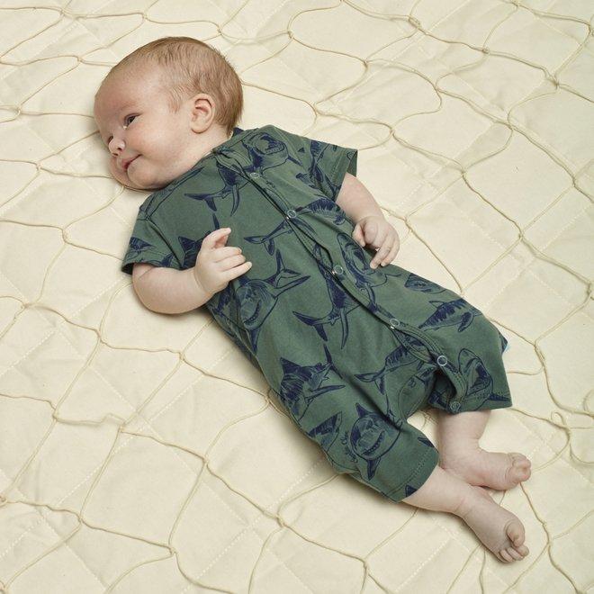 Charlie Choe Baby Boy Pyjamas Green Shark short