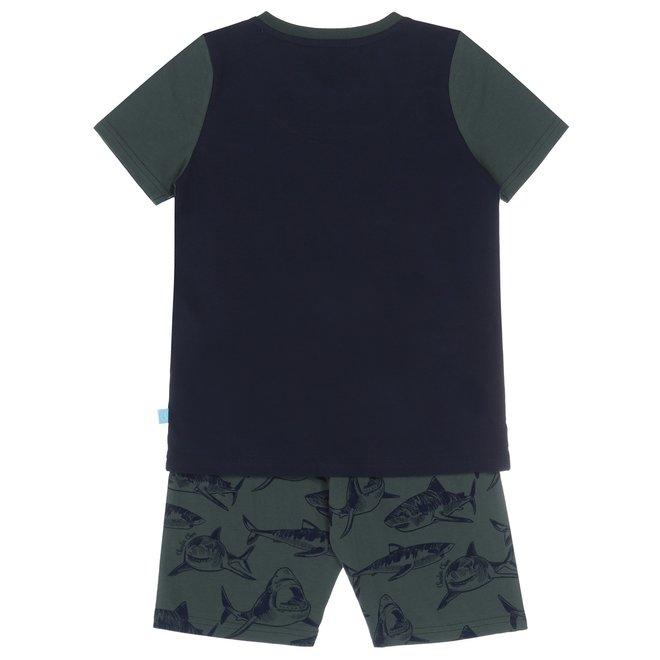 Charlie Choe Boys Pyjama Short Set (long) Green Shark