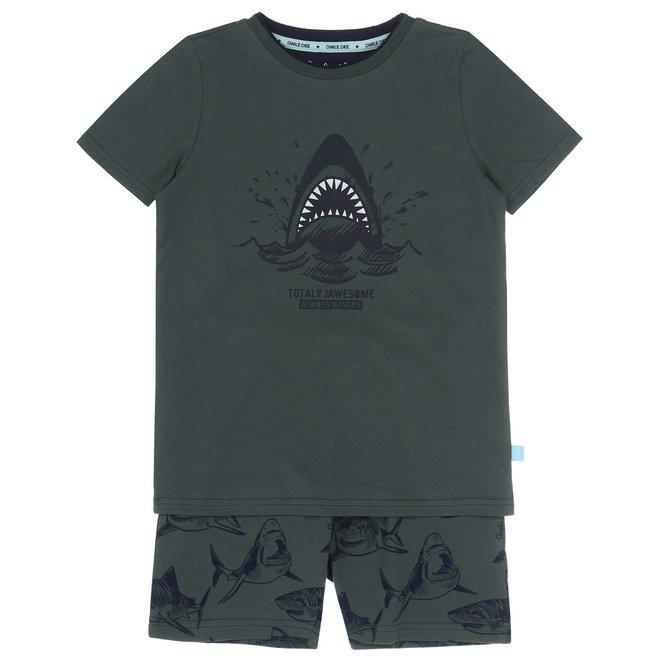 Charlie Choe Junge Pyjamas kurzes Set grüner Hai