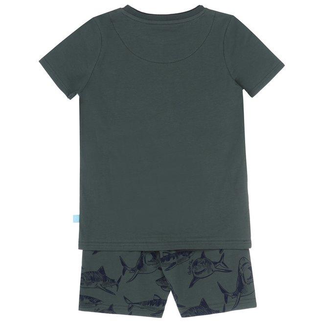 Charlie Choe Boys Pyjama Short Set Green Shark