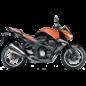 Tankhoes Kawasaki Z 1000 07-12
