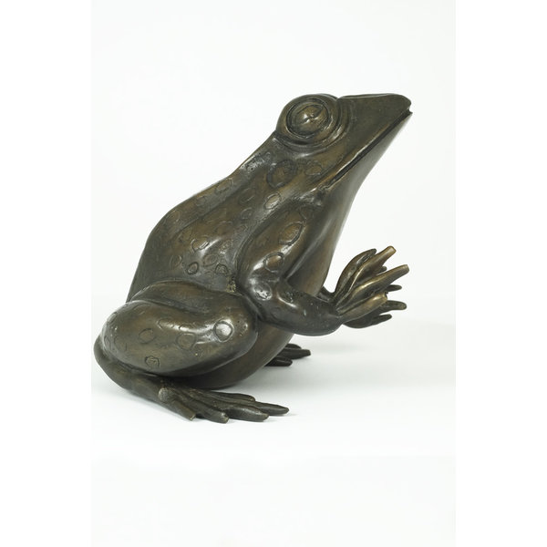Bronze sculpture of a sitting frog