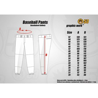 Jersey53 Baseball Pant - straight - Purple Piping