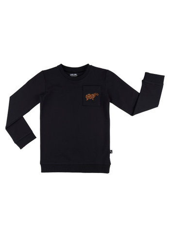 Capibara - sweater + pocket