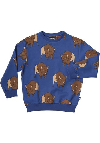 Bison - Sweater