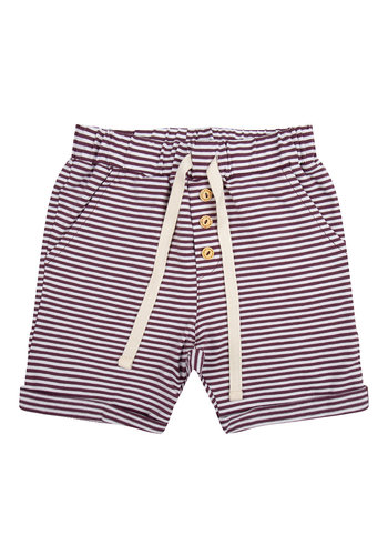 Pants Purlple stripes