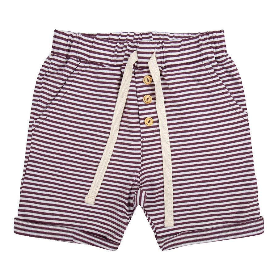 Little indians - Pants Purlple stripes-1