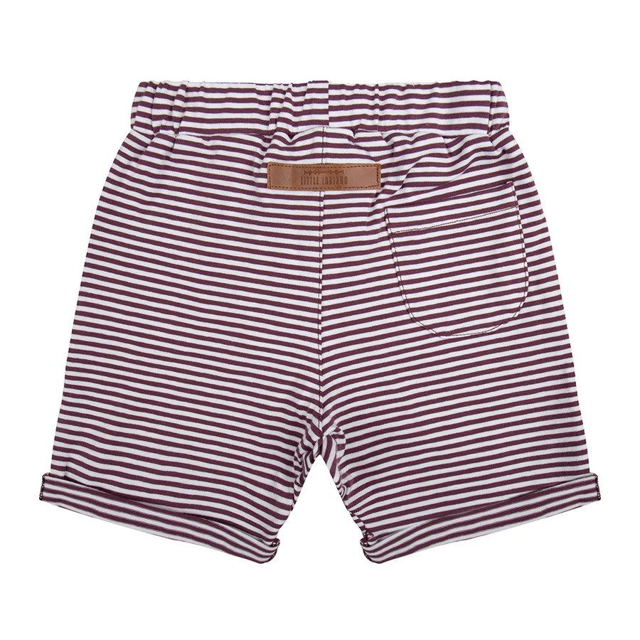 Little indians - Pants Purlple stripes-2