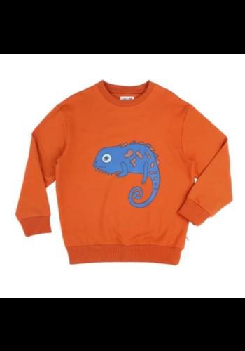 Chameleon sweater print