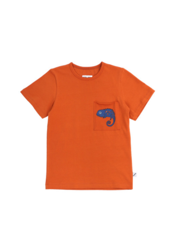 Chameleon t-shirt with pocket