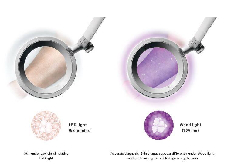 Loeparmatuur OPTICLUX Optie Woodlamp