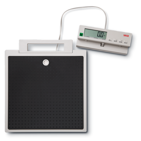 Seca 899 class III Rebust digital step scale with separate display