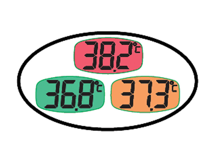 Digital thermometer with large display