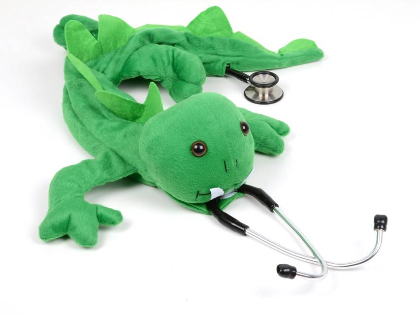 Stethoscope cover - dragon