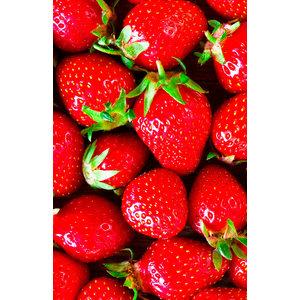 FiordiFrutta Fruitspread Aardbeien en wilde aardbeien  250g - BIO