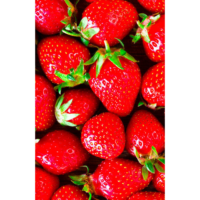 Fruitspread Aardbeien en wilde aardbeien  250g - BIO