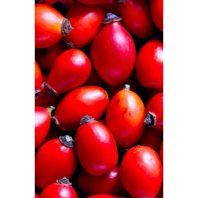 Fruitspread Rozenbottel - BIO