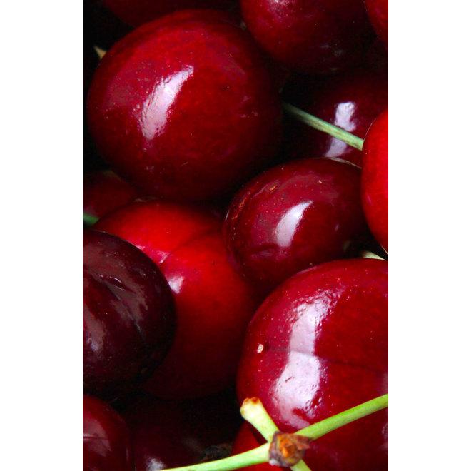 Fruitspread Kersen 250g - BIO