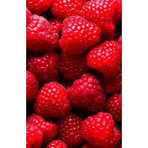 FiordiFrutta Fruitspread Frambozen 250g - BIO