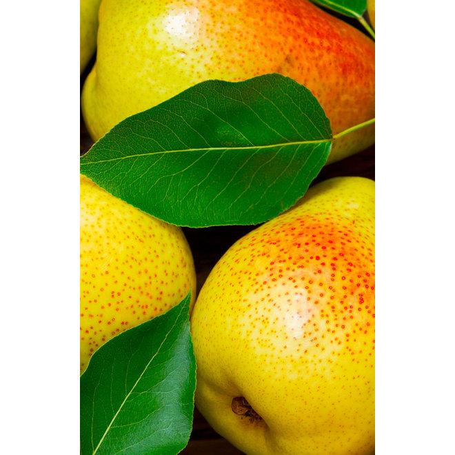 Fruitspread Peer - 250g - BIO