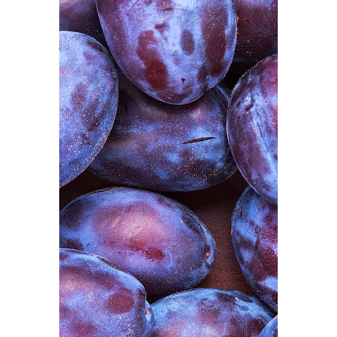 Fruitspread Pruimen 250g-BIO