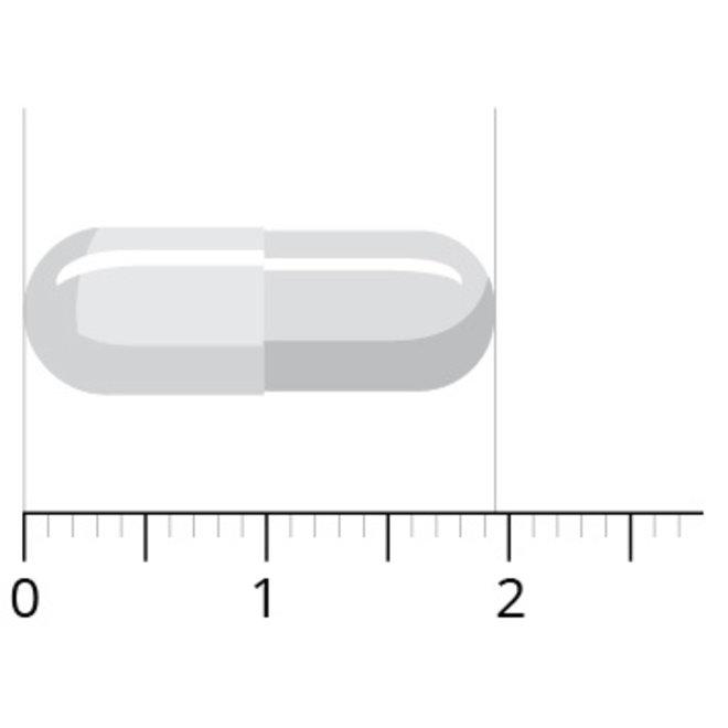 Kaneel-PF - 60 capsules