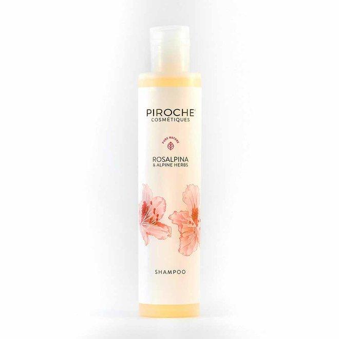 Shampoo Rosalpina