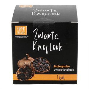 Hippocreates Professional Zwarte Knoflook - 1 Bol - BIO