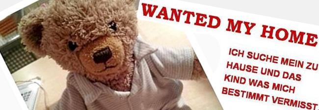 Teddybeer Pauli weer thuis na opsporingsbericht