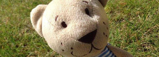 Teddybeer weer thuis dankzij de Zweedse luchtmacht